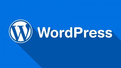 WordPress Yazı Sürümlerini Kaldırmak..