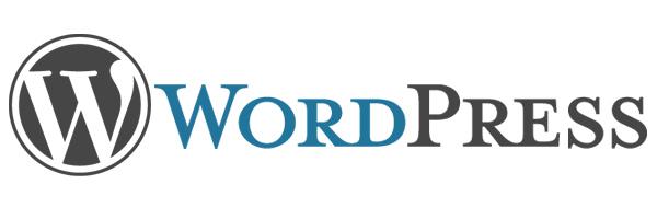 WordPress'te Yorumlardan Email, Website Bilgilerini Kaldırmak